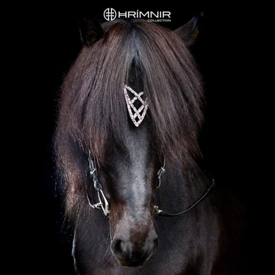 Hrimnir Headstall Heritage Shield