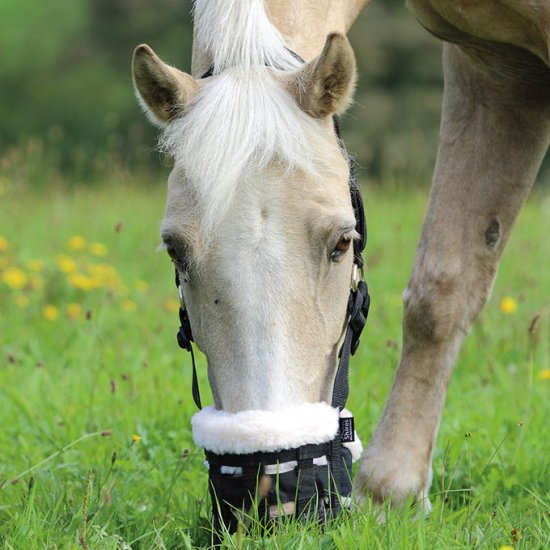 Shires Gräsreducerare Deluxe Comfort Grazing Muzzle
